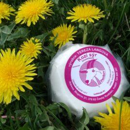 Kozí sýr s brusinkami 120g